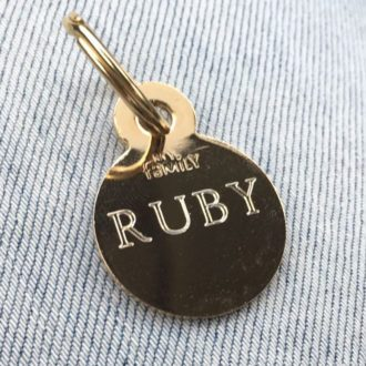 ruby-cavoodle-cavapoo-urban-puppies-melbourne-vict